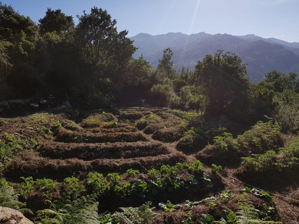 A Simana Festival – Corsica
